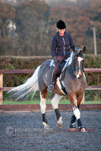 Equestrian-Images-7