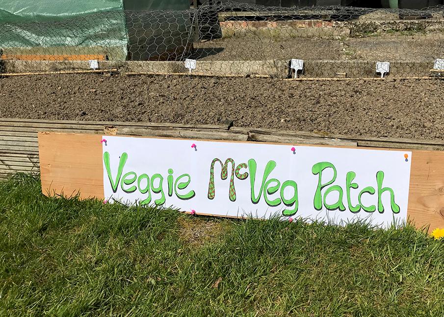 Veggie McVeg Patch